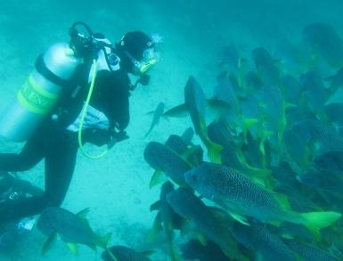 Foto: Galapagos PRO