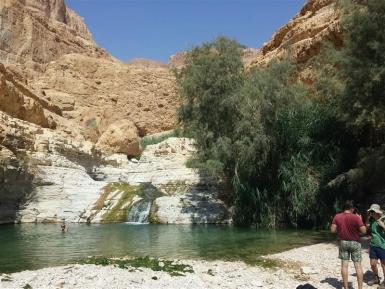 Wasserfälle mitten in der Wüste im Nahal Arugot in Ein Gedi - Foto: Elo Resch-Pilcik
